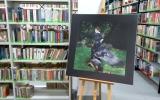 wystawa mroczek i majkowski biblioteka rumia (3)