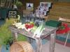 galeria-redzkie-impresje-2009-142
